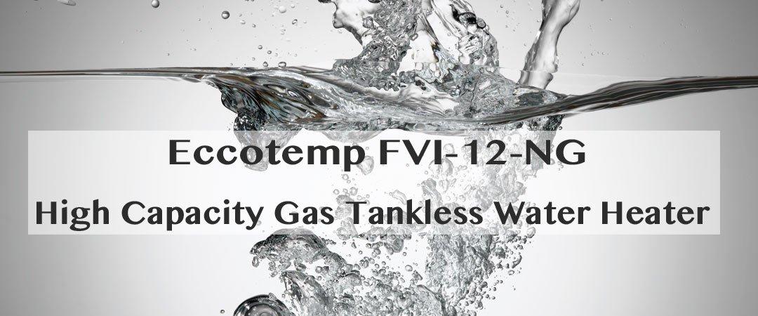 EccoTemp FVI-12-NG