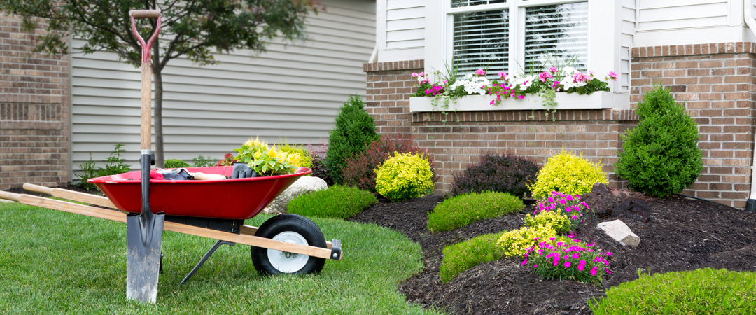 House with wheel barrel hauling flowers for flower beds